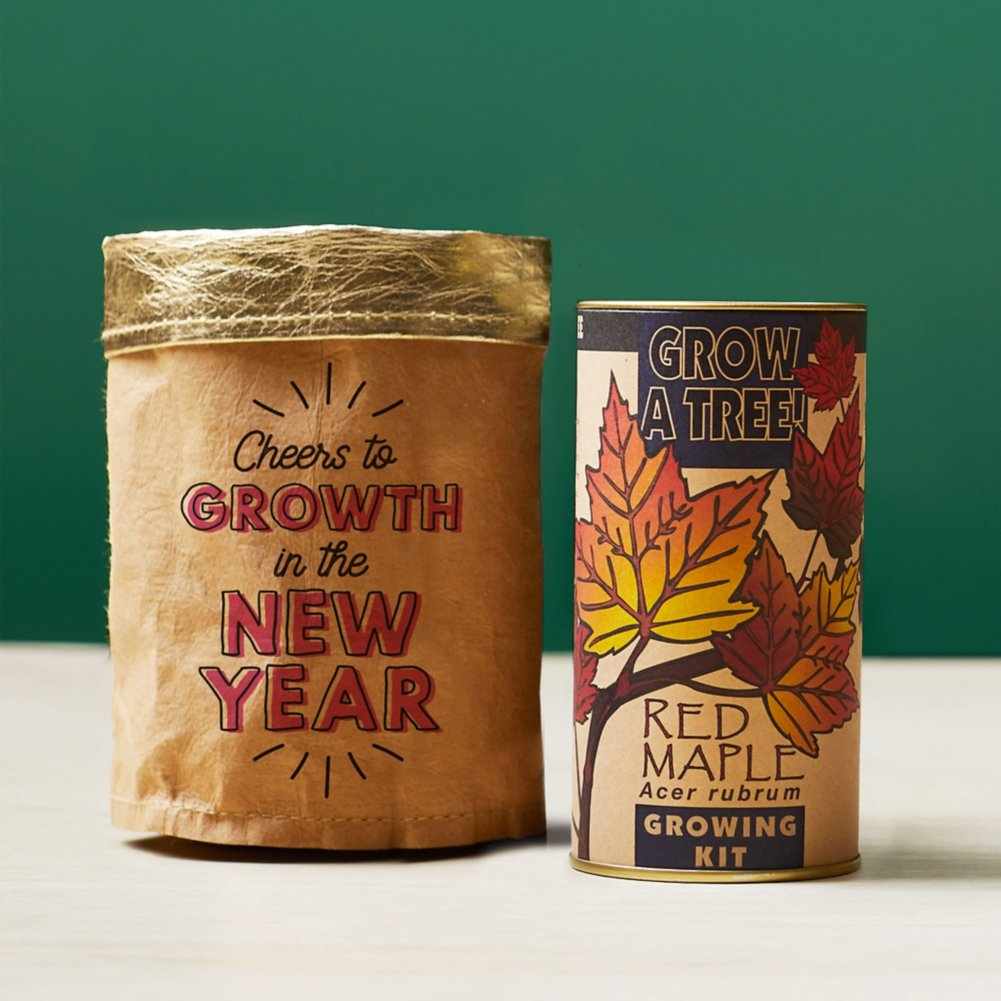 View larger image of Tree-Mendous Appreciation Grow Kits - Cheers to Growth