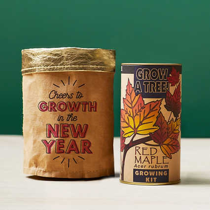 Tree-Mendous Appreciation Grow Kits - Cheers to Growth