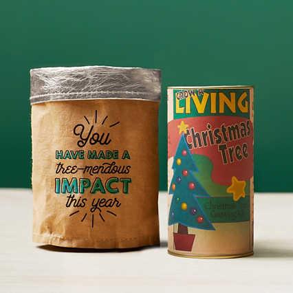 Tree-Mendous Appreciation Grow Kits - Tree-Mendous Impact