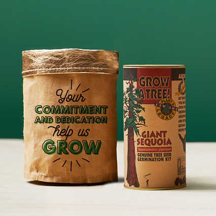 Tree-Mendous Appreciation Grow Kits - Commitment and Dedication