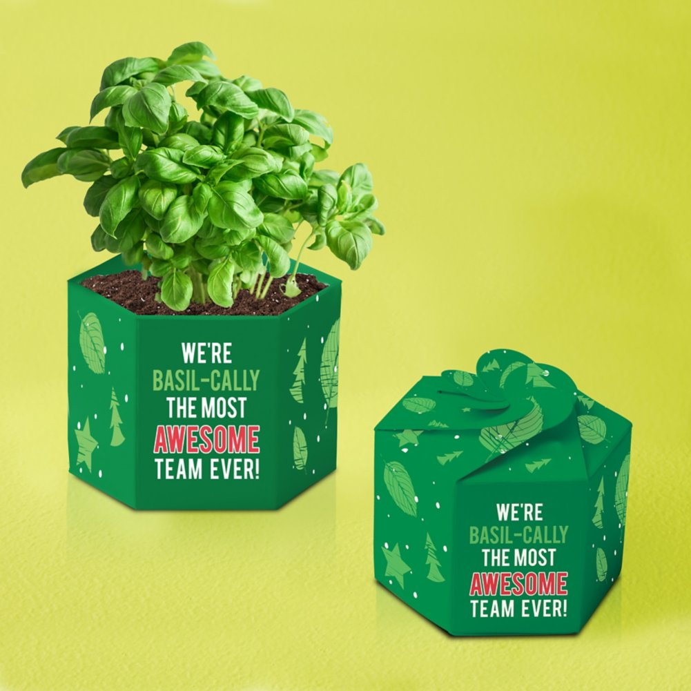 View larger image of Pop-Up Planter Starter Kit - Most Awesome Team