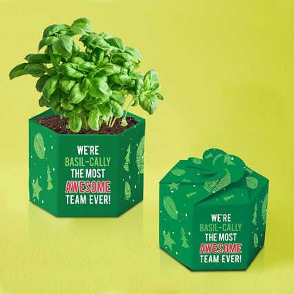Pop-Up Planter Starter Kit - Most Awesome Team