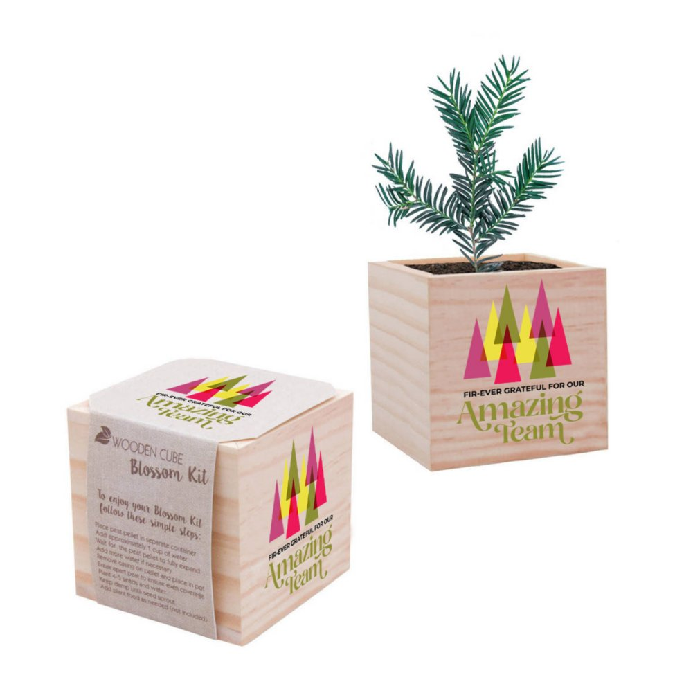 View larger image of Appreciation Plant Cube - Fir-Ever Grateful