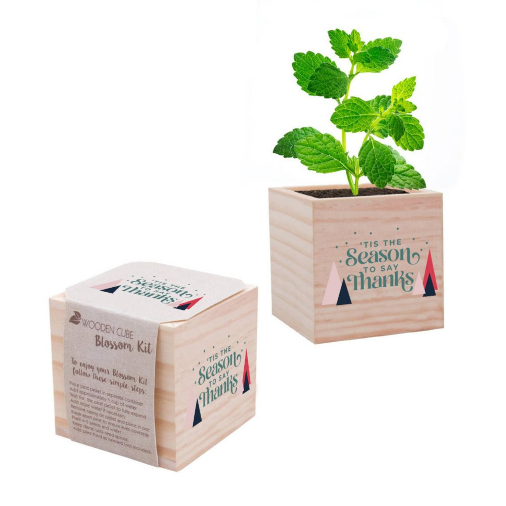View larger image of Appreciation Plant Cube - 'Tis the Season to Say Thanks