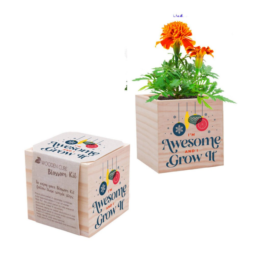 View larger image of Appreciation Plant Cube - I'm Awesome and I Grow It