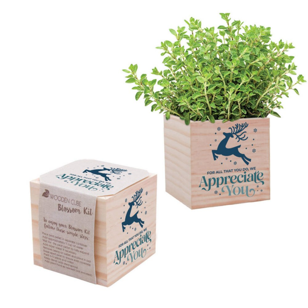 View larger image of Appreciation Plant Cube - We Appreciate You