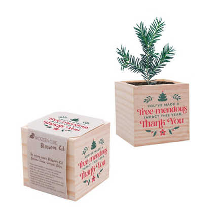 Appreciation Plant Cube - You've Made a Tree-mendous Impact