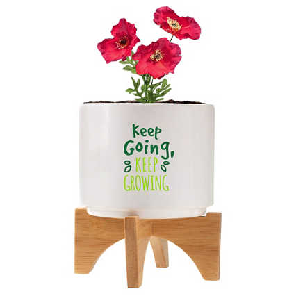 Mod Vibes Ceramic Planter Kit - Keep Going Keep Growing