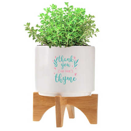 Mod Vibes Ceramic Planter Kit - Thank You for Your Thyme