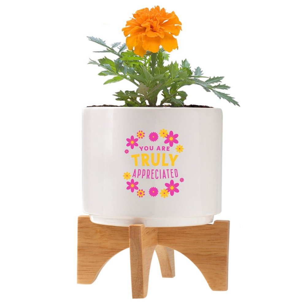 View larger image of Mod Vibes Ceramic Planter Kit - You Are Truly Appreciated