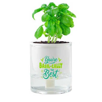 Just Right Self-Watering Planter Kit - Basil-cally the Best