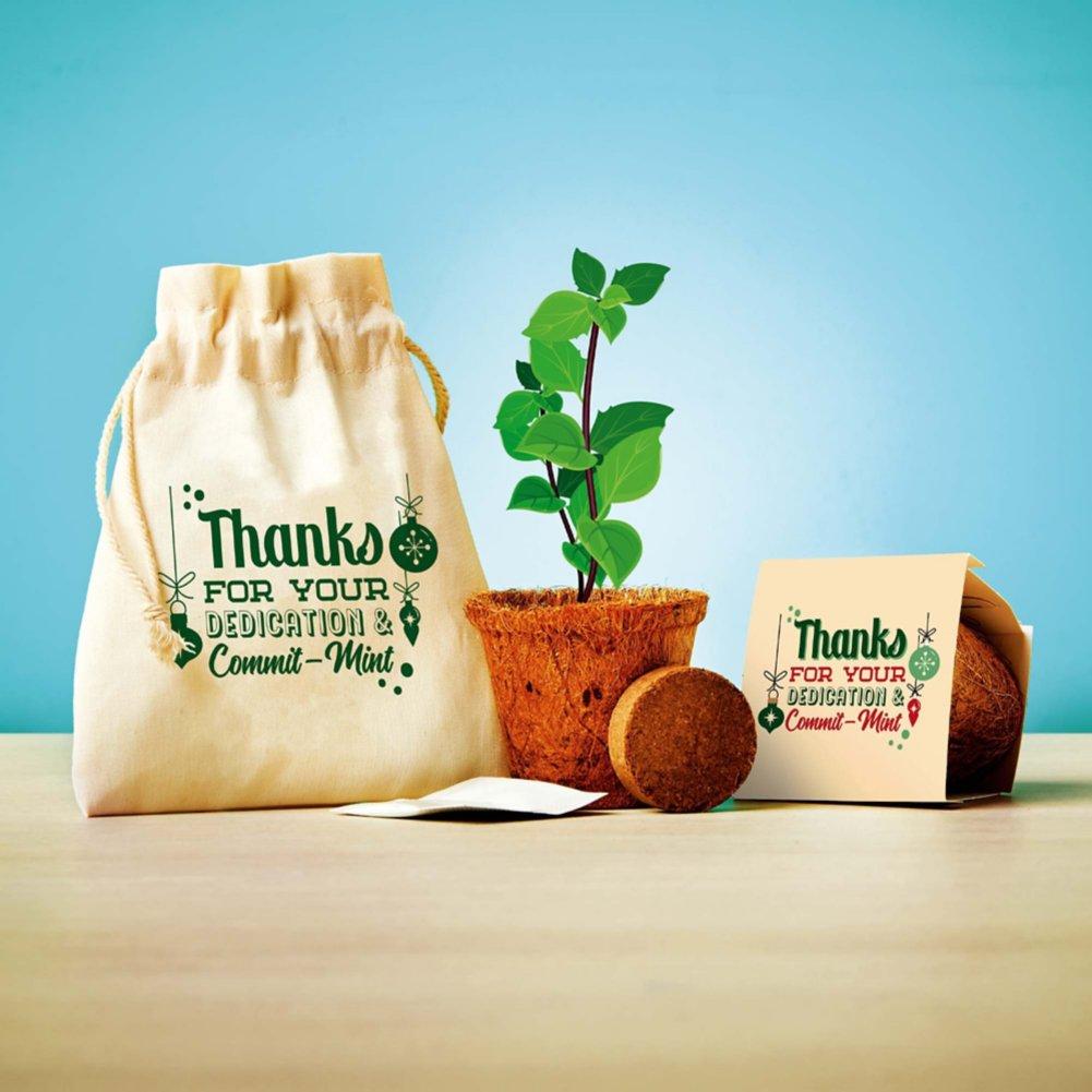 View larger image of Plantable Encouragement Set - Dedication & Commit-mint