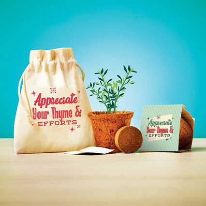 Plantable Encouragement Set - Thyme & Efforts