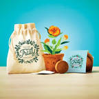 View larger image of Plantable Encouragement Set - You Are Truly Appreciated