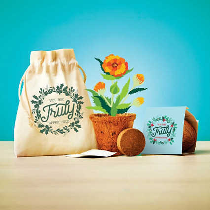 Plantable Encouragement Set - You Are Truly Appreciated