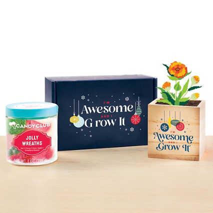 Sweet Blooms Appreciation Plant Kit - I Grow It