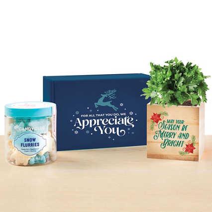 Sweet Blooms Appreciation Plant Kit - We Appreciate You