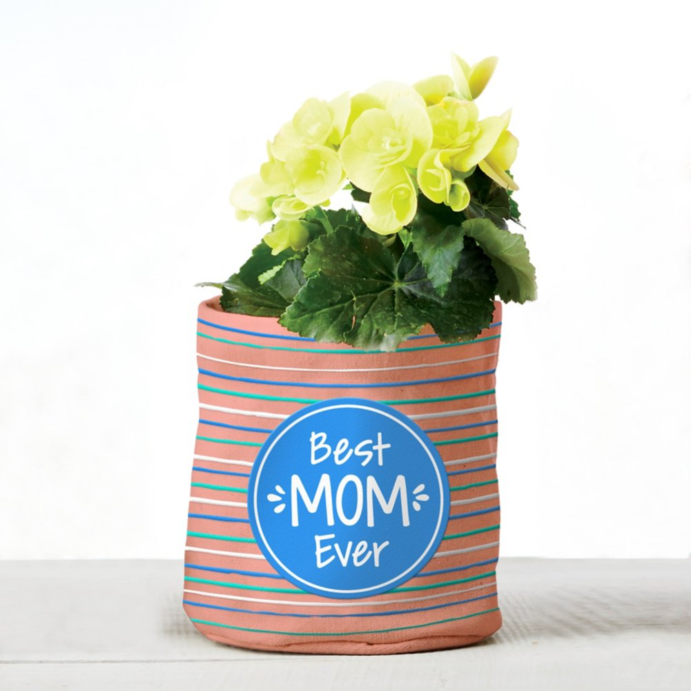 Positively Perfect Plant Holder - Best Mom Ever