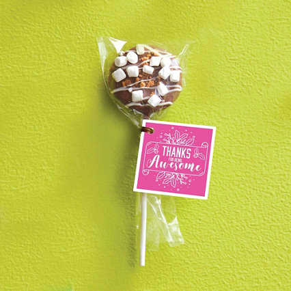 Hand-Dipped Cookie Dough Pop - S'more