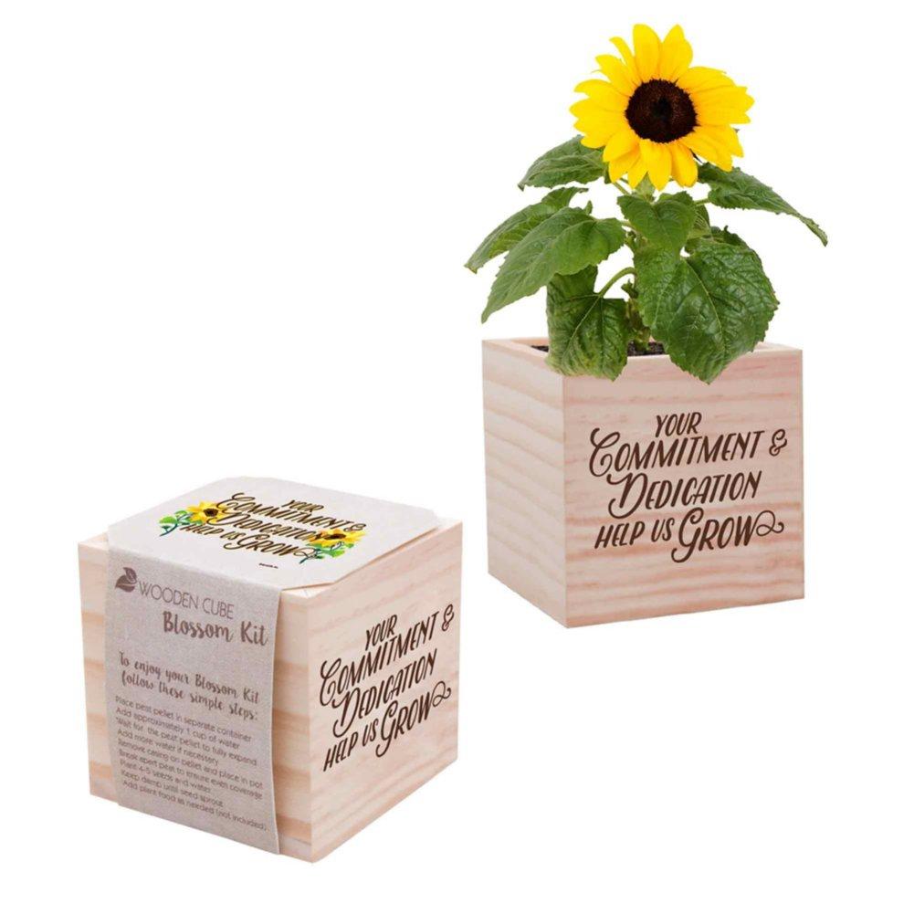 Appreciation Plant Cube - Your Commitment & Dedication