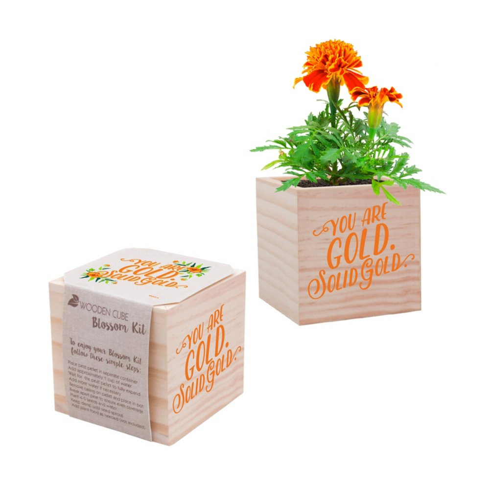 View larger image of Appreciation Plant Cube - You Are Gold. Solid Gold.