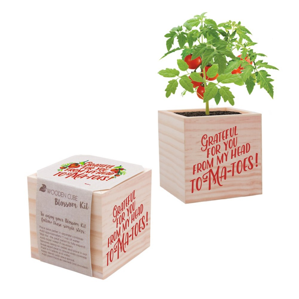 View larger image of Appreciation Plant Cube-Grateful For You