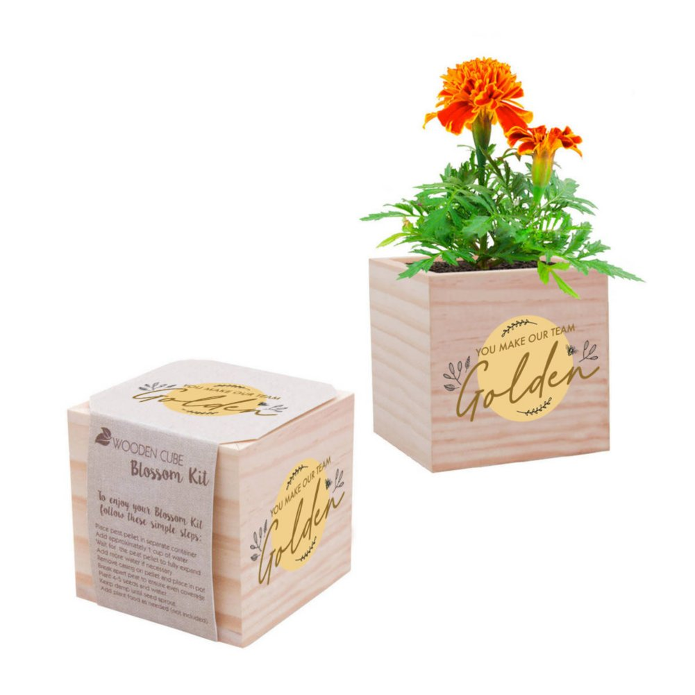 View larger image of Appreciation Plant Cube - You Make Our Team