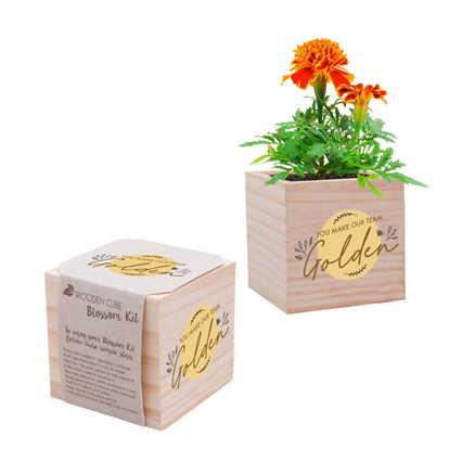Appreciation Plant Cube - You Make Our Team