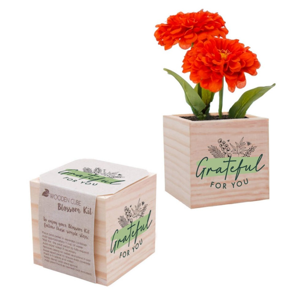 View larger image of Appreciation Plant Cube - Grateful For You