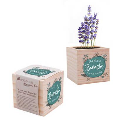 Appreciation Plant Cube- Thanks a Bunch
