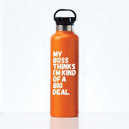 Stealth Stainless Bottle - My Boss Thinks I'm a Big Deal