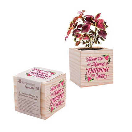 Appreciation Plant Cube - Making a Difference