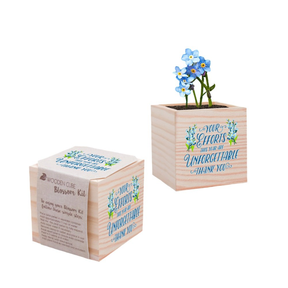 View larger image of Holiday Appreciation Plant Cube - Your Efforts are Unforgettable