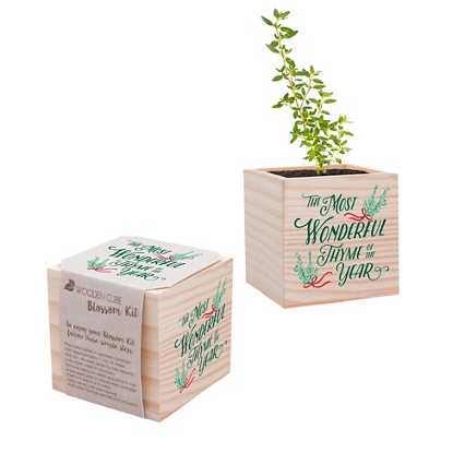 Holiday Appreciation Plant Cube - The Most Wonderful Thyme