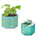 View larger image of Pop Up Planter Starter Kit - Skills Pay Bills