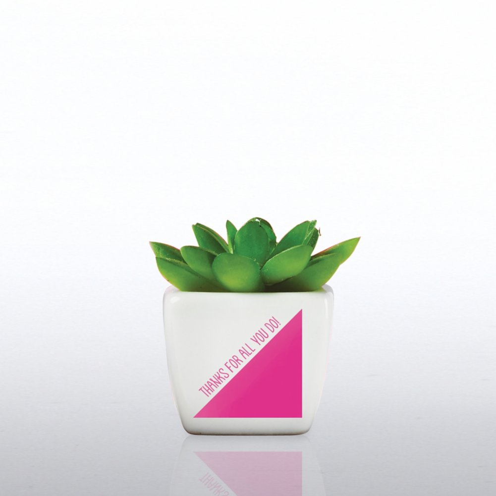 View larger image of Petite Faux Succulent - Thanks For All You Do!