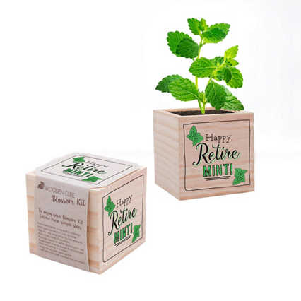 Appreciation Plant Cube - Happy Retire-mint