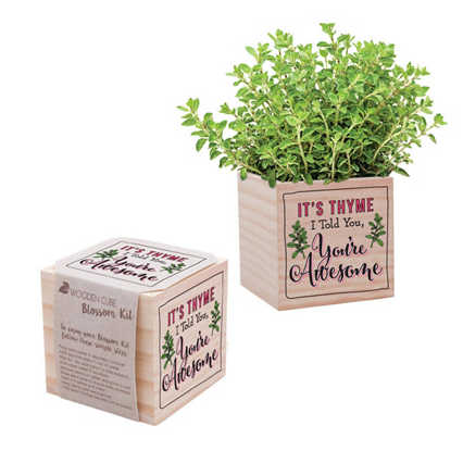 Appreciation Plant Cube - You're Awesome - Thyme