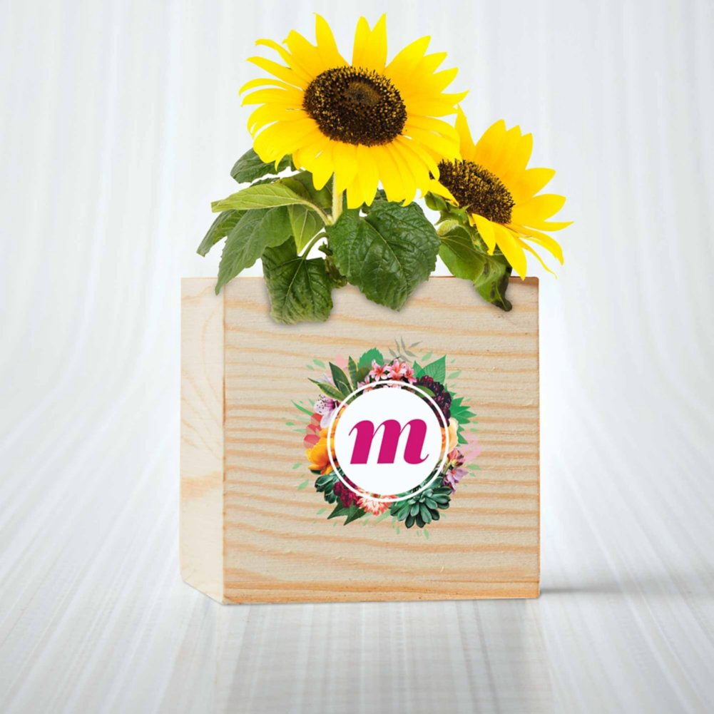 View larger image of Custom Collection: Appreciation Plant Cube - Sunflower