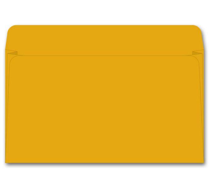 25520-Card File Expansion Envelope, 40 lb Kraft25520