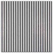 "Black Stripes On White Tissue Paper, 20 x 30"""