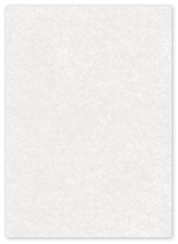 Solid Food Grade Tissue Paper, White, 12 x 12