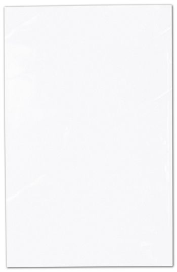 Clear Polypropylene Bags Non Gusseted, 3 x 5 1/2