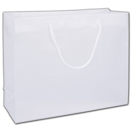 """Clear Frosted Euro-Totes, 16 x 6 x 12"""""""