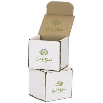 White Mailers, 1 Color/Top Interior/1 Side Exterior, 4x4x4