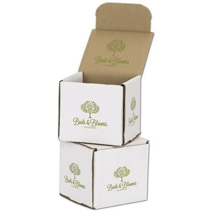 White Mailers, 1 Color/Top Interior/4 Side Exterior, 4x4x4