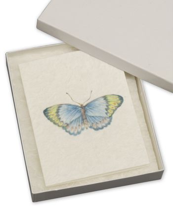 White Krome Jewelry Boxes, 6 x 5 x 1