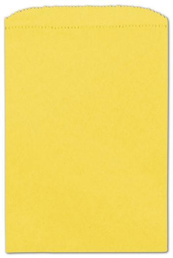 Sunbrite Paper Merchandise Bags, 6 1/4 x 9 1/4