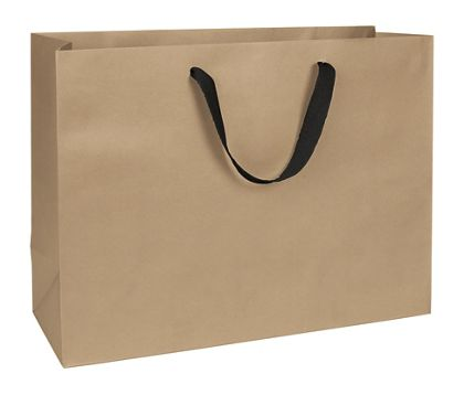 Chelsea Kraft Manhattan Eco Euro-Shoppers, 16 x 6 x 12""