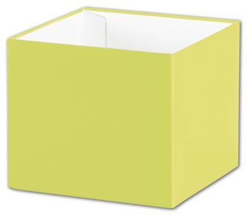 Pistachio Gift Box Bases, 4 x 4 x 3 1/2